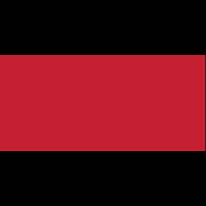 Logo - Archer Paper Goods